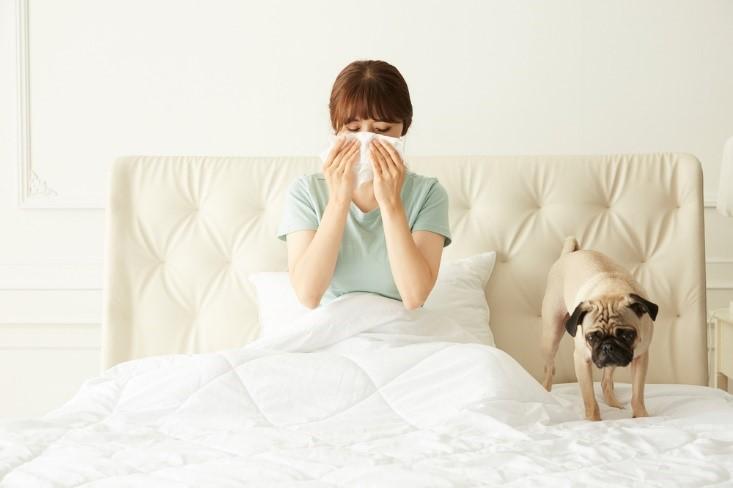 눈 시림, 알레르기 결막염